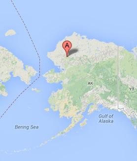 AlaskaWhitegiants2