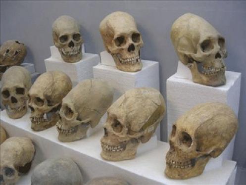 TiwanakuSkulls2