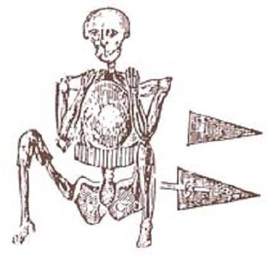 Skeleton_in_armor