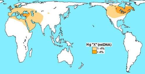 800px-Haplogroup_X_(mtDNA)